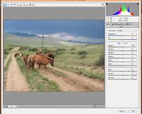 Как использовать Camera Raw фильтры в фотошопе 1